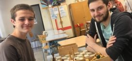 Ajedrez: estudios pioneros en Francia